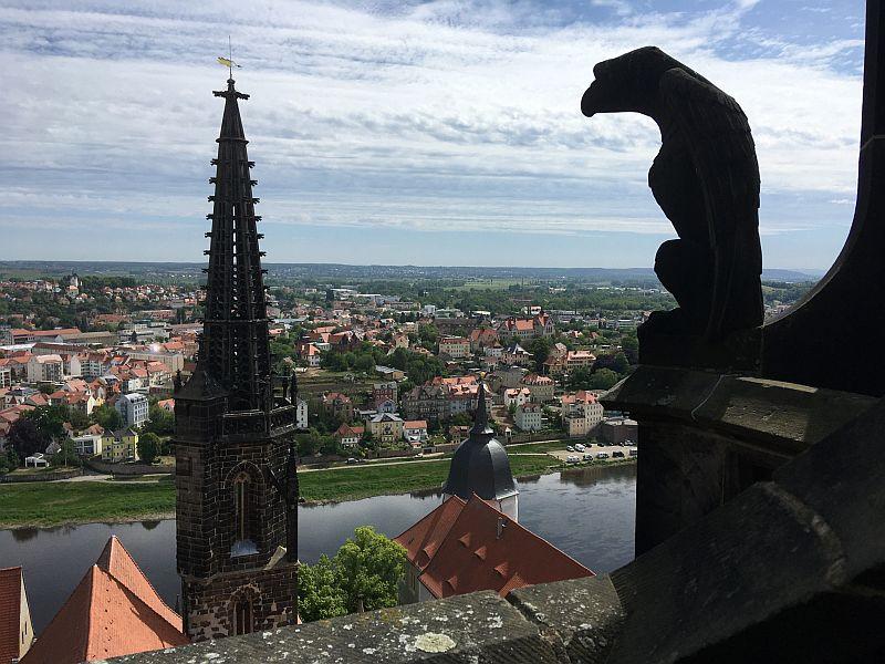 Adlerblick zum hoeckrigen Turm (c) Meißner Dom