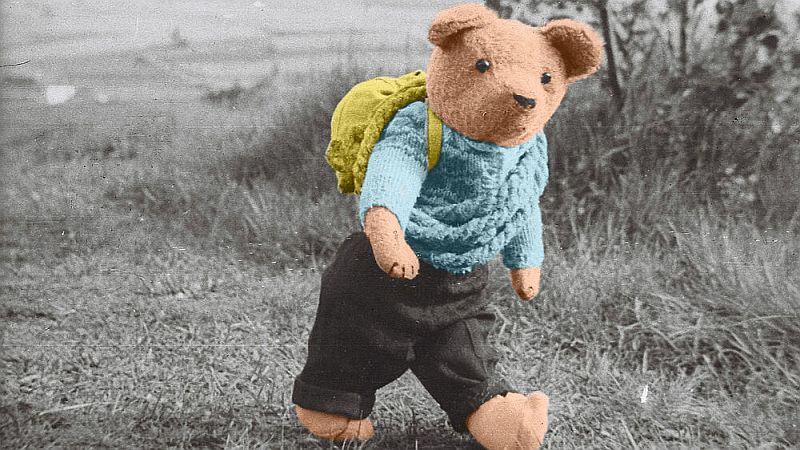 Teddy möchte reisen (c) pirna.de
